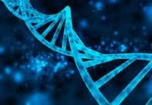 Software de análise de DNA
